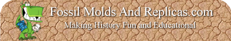 Fossil Molds And Replicas.com